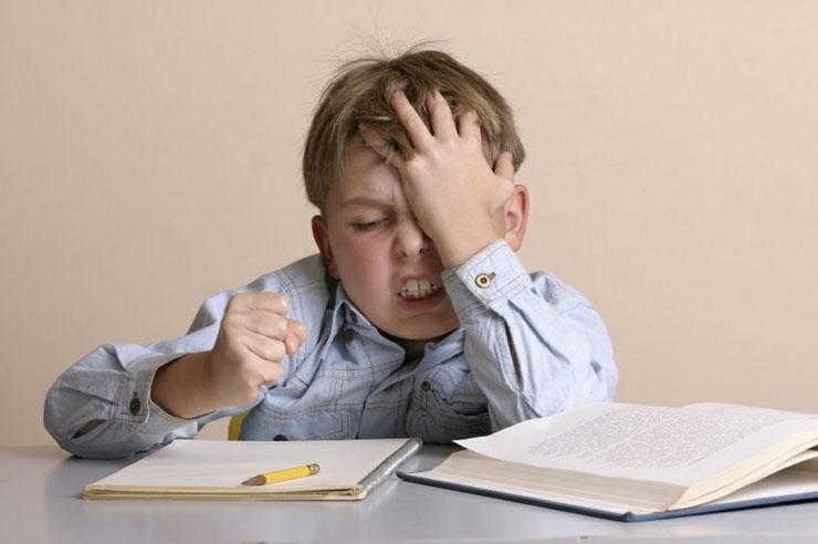 ГДЗ для школьников: Зачем школьнику нужен решебник?